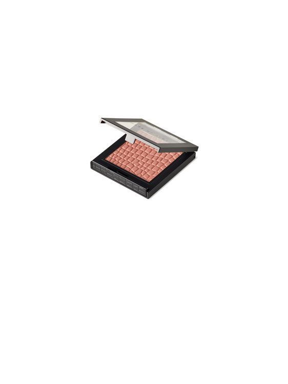 Make Up Store Blush Complex
